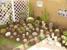 Vystava_2009_49