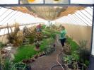 Výstava květin Čimelice 2011_10