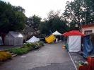 Výstava květin Čimelice 2011_11