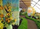 Výstava květin Čimelice 2011_15
