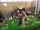 Výstava květin Čimelice 2011_22