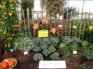 Výstava květin Čimelice 2011_23