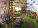 Výstava květin Čimelice 2011_30