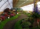 Výstava květin Čimelice 2011_31