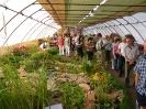 Výstava květin Čimelice 2011_3