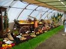 Výstava květin Čimelice 2011_40