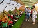 Výstava květin Čimelice 2011_41