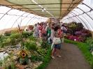 Výstava květin Čimelice 2011_44