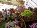Výstava květin Čimelice 2011_45