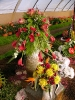 Výstava květin Čimelice 2011_55