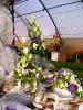 Výstava květin Čimelice 2011_56