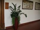 Květinová vazba a služby 2