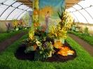 Výstava květin Čimelice 2011_14