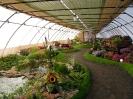 Výstava květin Čimelice 2011_28