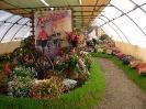 Výstava květin Čimelice 2011_36