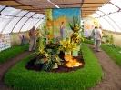 Výstava květin Čimelice 2011_39
