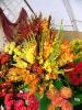 Výstava květin Čimelice 2011_57