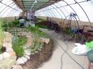 Výstava květin Čimelice 2011_5