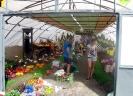 Výstava květin Čimelice 2011_9